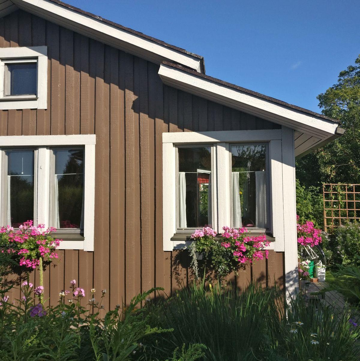 Pelargoniat ruskean puutarhurin majan ikkunalla.