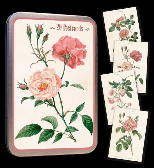 Ruusu postikortit peltirasiassa