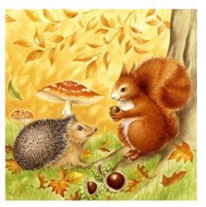 Servetti orava siili