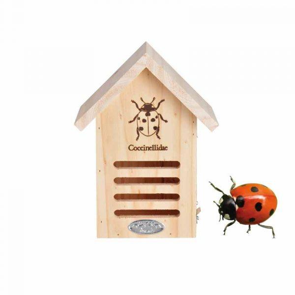 hyönteishotelli leppäkertuille