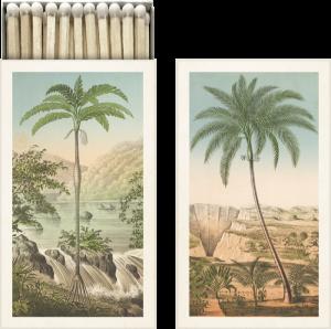Palmu tulitikkurasia sköna ting