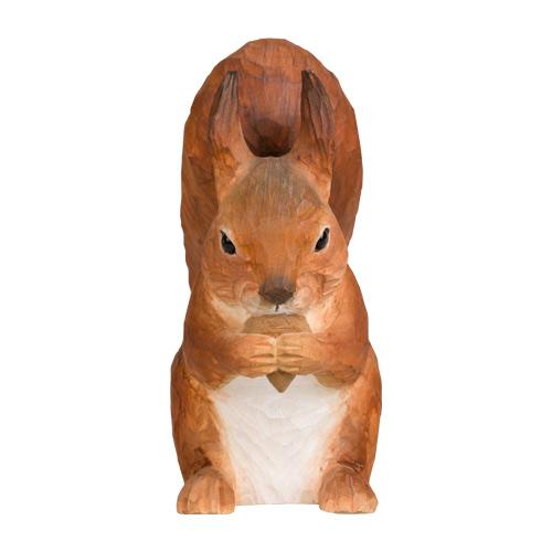 Orava syö tammenterhoa Wildlife Garden